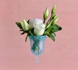 Menstrual cups and Lubricants