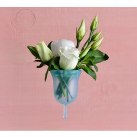 Menstrual cups, Lubricants and Disinfection sprays